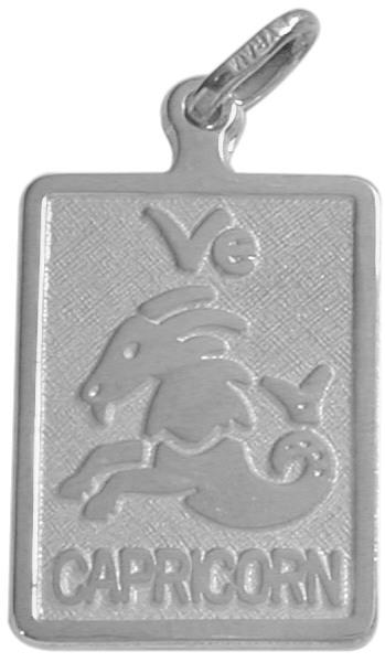 10 Karat White Gold Capricorn Zodiac Pendant